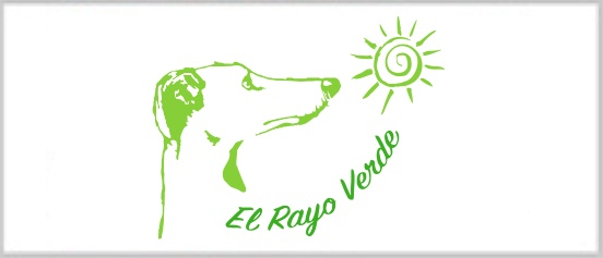 new-logo-rayo-verde